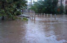 افزایش 10 برابری بارش باران در آستارا
