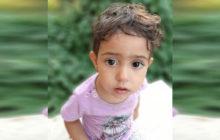 ناپدیدشدن مرموز زهرای ۲ ساله/ این دختر بچه را ندیدهاید؟ + تصاویر